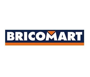 transpaletas bricomart